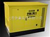 30KW汽油发电机 液化气发电机 静音燃气发电机组