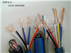 计算机电缆DJYVP计算机电缆