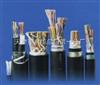 国标DJYPVDJYPV计算机电缆,DJYPV电缆