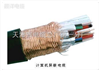 齐全计算机屏蔽电缆DJYPV3×3×0.75mm2